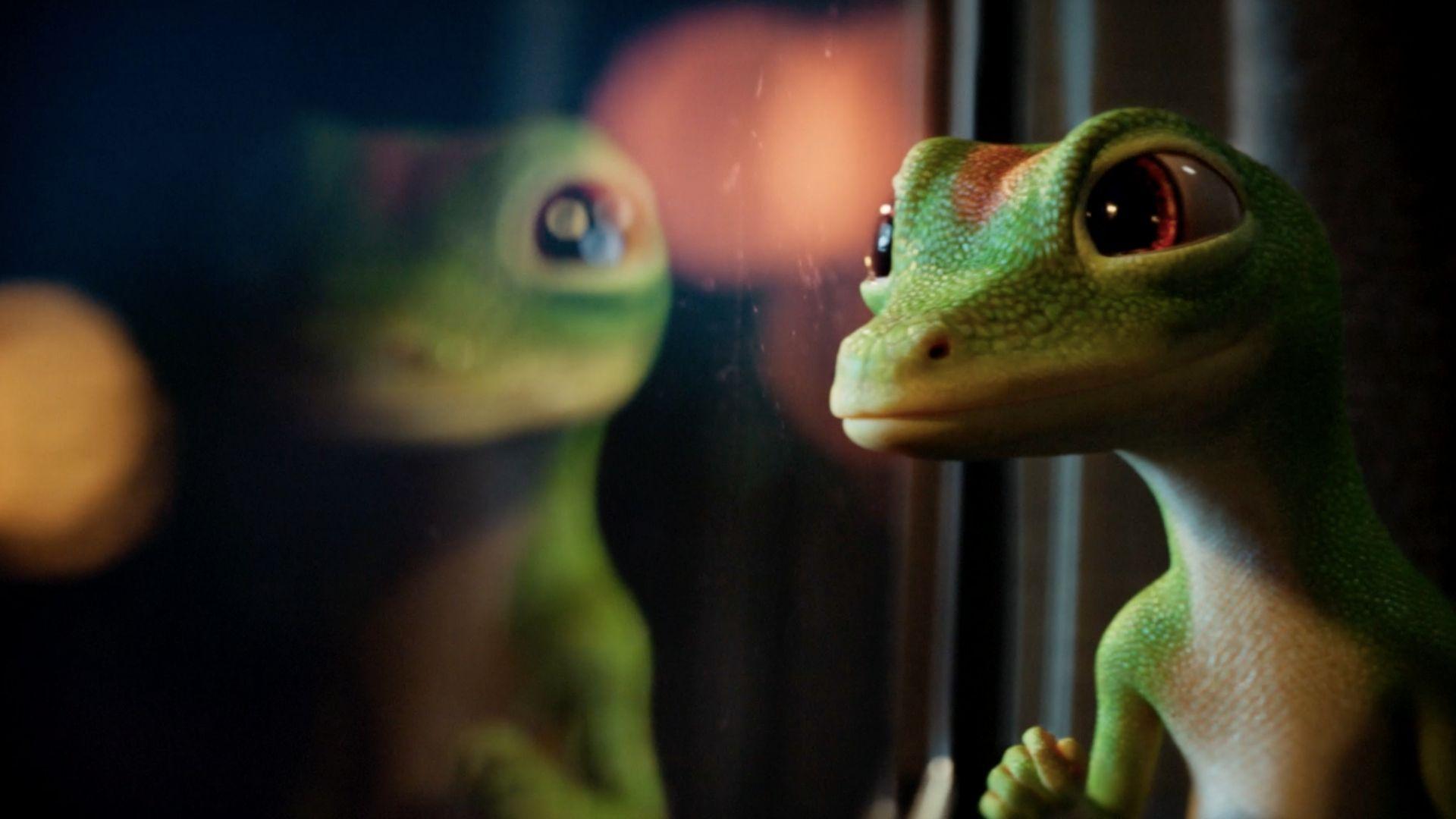 Gecko Next Door